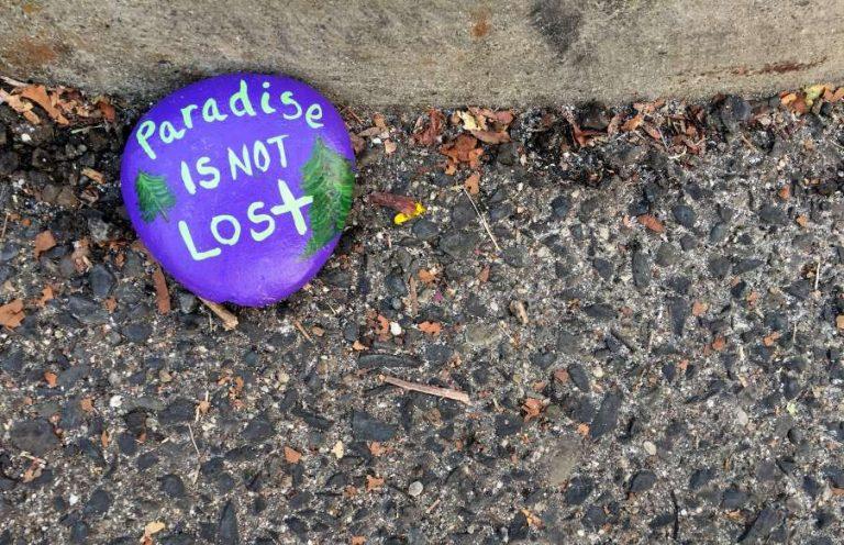 Paradisul nu este pierdut. Focul care a unit sufletele (imagini emotionante)