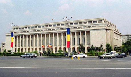 """Noi miniștri: Budăi, absolvent de facultate privată la 36 de ani și Bădălău, senatorul """"Ficățel""""."""
